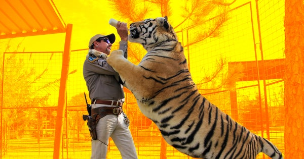 The Successful and Failed Marketing & PR Strategies of Joe Exotic, the Tiger King