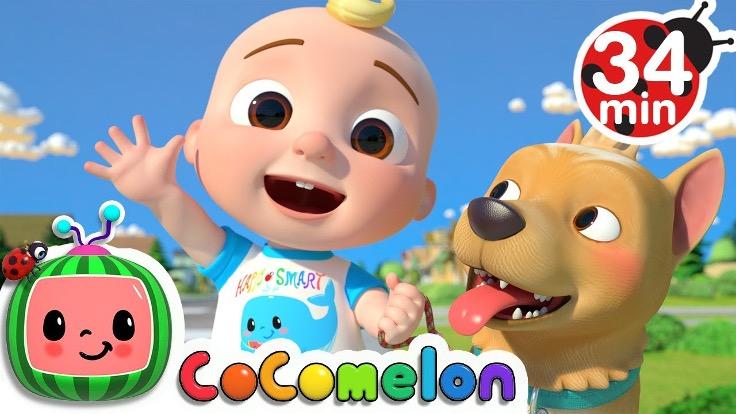 Cocomeleon - Nursery Rhymes