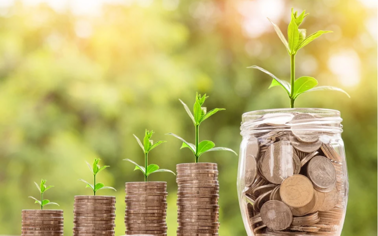 Smart Ways To Invest Your Money This 2021